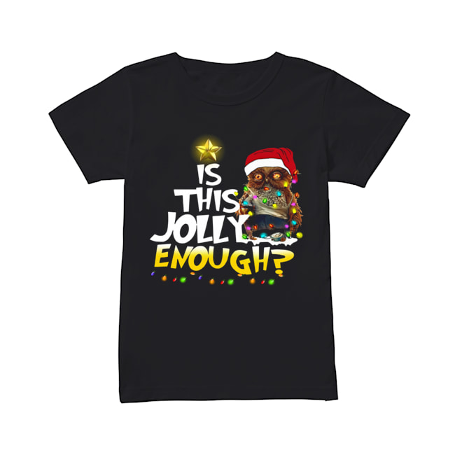 Owl Harry Potter is this Jolly Enough christmas  Classic Women's T-shirt