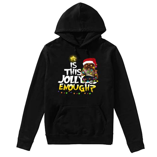 Owl Harry Potter is this Jolly Enough christmas  Unisex Hoodie